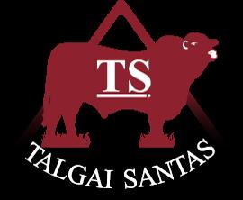 Talgai Santa Gertrudis Banner